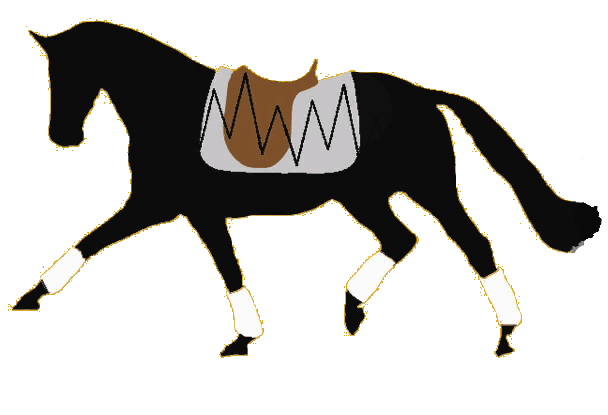 Saddle Research Trust