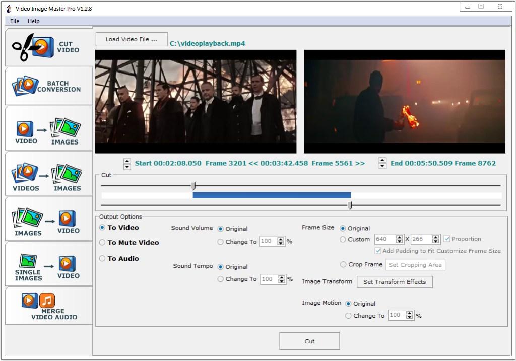Video Image Master Pro Crack Serial Key