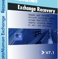 DataNumen Exchange Recovery Crack