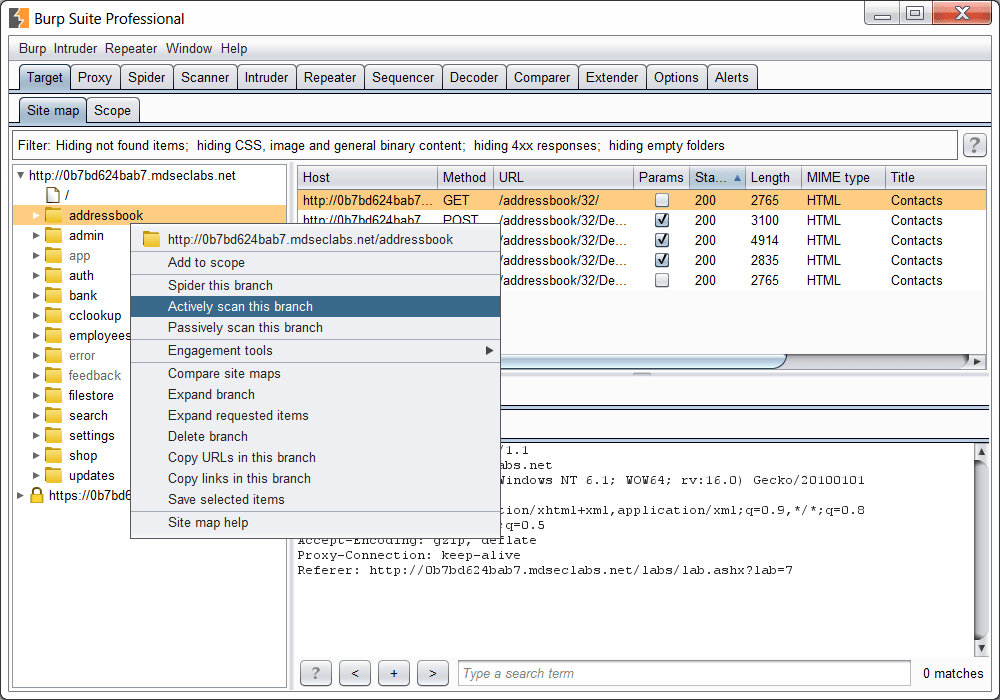 Burp Suite Professional Crack Patch