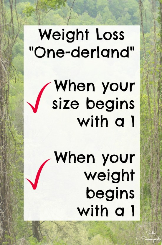 Onederland for losing weight and the power of numbers during a weight loss journey