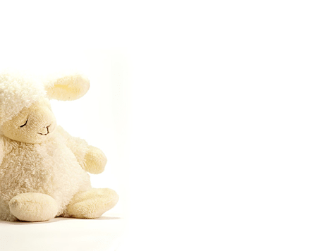 Cute-toy-lamb-wallpaper