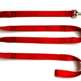 Large 1in. Leash For Dogs up to 250lbs.