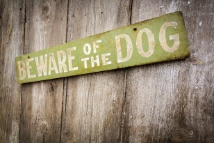 The impact of dog bite claims by homeowners