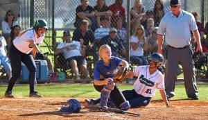 Dixie Softball insurance