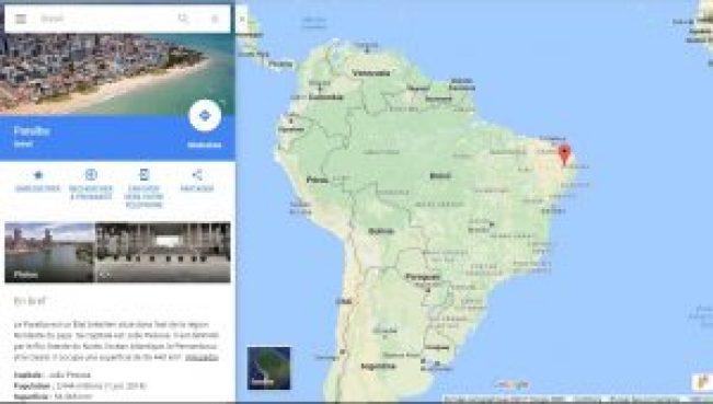 pays d'origine Brésil