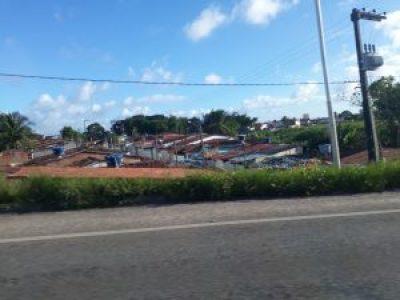 Adopté Joao Pessoa Brésil