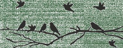 Muursticker vogeltjes op een tak  Muurstickers  Sadora
