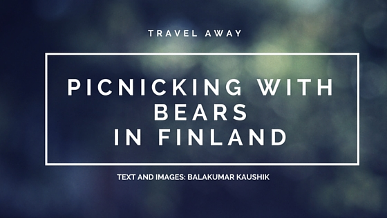 Saevus nEARS-BLOGPOST-TITLE Photographing Brown Bears in Finland Photography  Travel The Animal Kingdom Photography