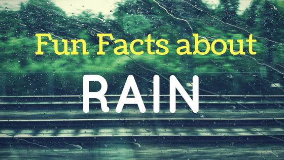 Fun Facts about Rain that will Fascinate You