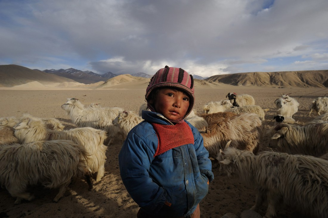 Too young to leave for school or live away from mom, Tenzin, 4, is very much part of the last few nomadic groups. Playing with Pashmina sheep and learning early the basic elements of nature like the warmth and the wind, Tenzin frequently looks far. In a few years he will take up the philosophy of a contemporary and essentially urban world that never mourned for a lost horizon.