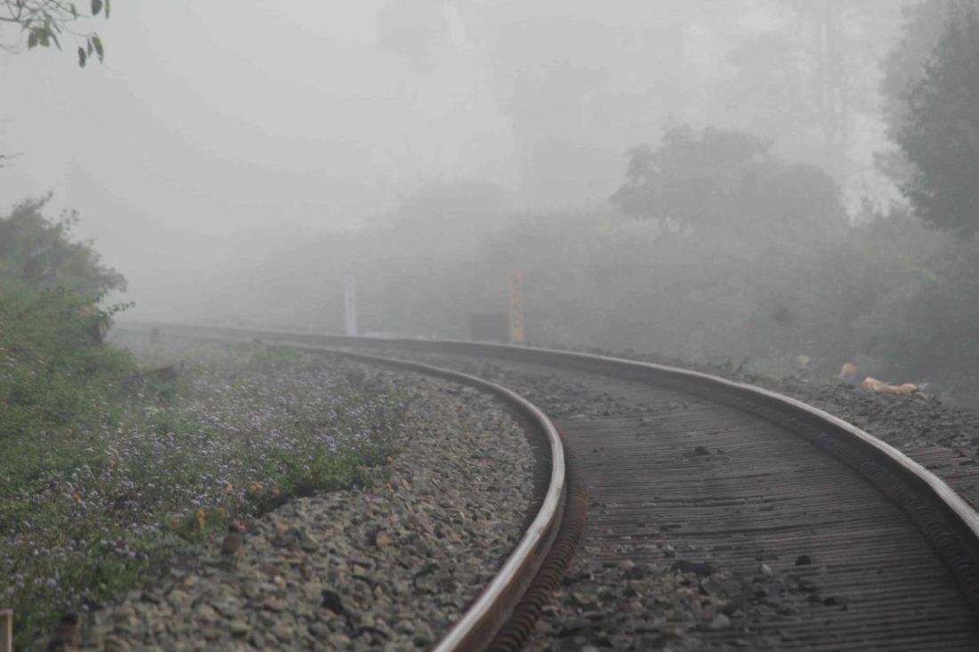The railway line adjacent to the sanctuary