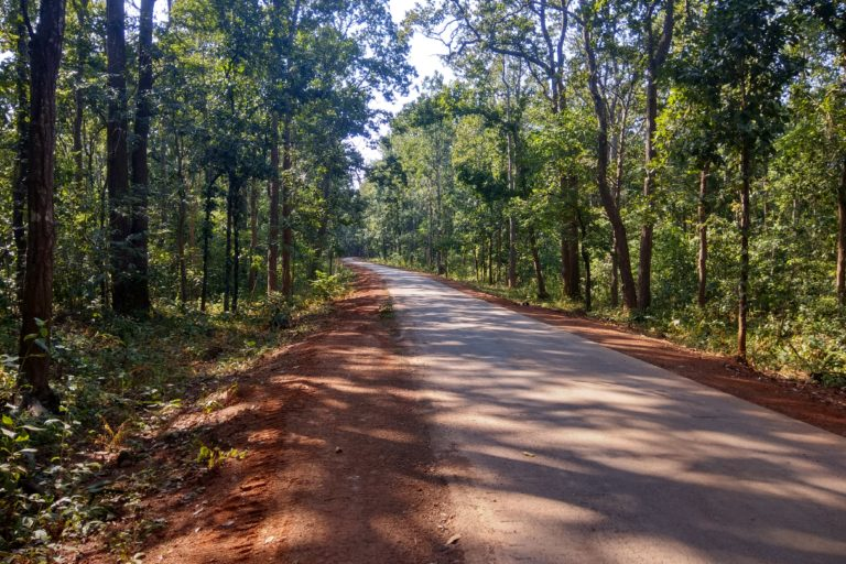 Studies estimate that FRA Act's proper implementation can benefit around 200 million forest dwellers. Photo by Mayank Aggarwal/Mongabay-India.
