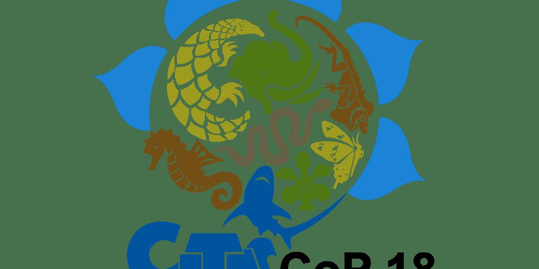 Wildlife trade summit may move to Geneva amid Colombo security concerns