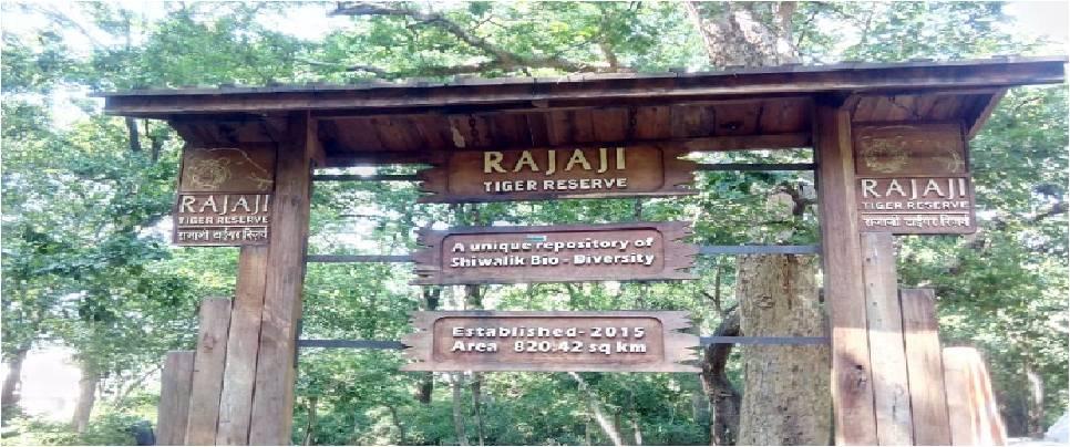 Rajaji National Park: A Rajashahi wildlife experience