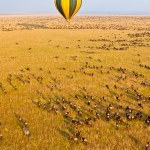 Balloon safari passengers must ensure that they are not suffering from any significant medical condition