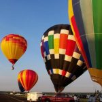 The passengers who first travelled in a hot air balloon were a rooster, duck, and a sheep