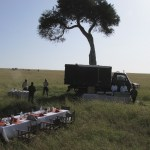 Even though safari vehicles are open they guarantee your safety at all times