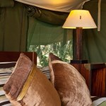 Tented camps are famous for its game-viewing opportunities