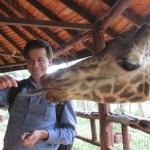 The binomial name of giraffe is Giraffa camelopardalis