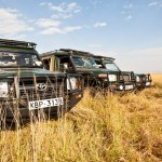 A game drive in an open vehicle allows close encounters with leopard, lion, elephant, rhino and buffalo
