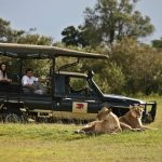http://safariandco.com/uncategorized/the-great-walk-of-africa-kenya/