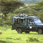 http://www.africanconservation.org/wildlife-safaris