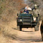 http://www.explore254.com/place/safari-game-drives-in-kenya/