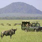 http://safari-consultants.com/destinations/kenya/regions/chyulu-hills