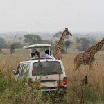 http://africangatestours.com/safaris/