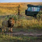 https://www.naturalworldsafaris.com/africa/kenya/when-to-go/april