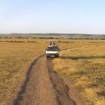 http://www.africanbudgetsafaris.com/budget-lodge-safaris/masai-mara-aberdare-nakuru-kenya-lodge-safari/