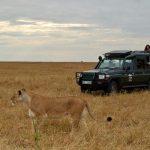 http://www.safari.co.za/Kenya_Safari_Packages-travel/3-day-masai-mara-breakaway.html