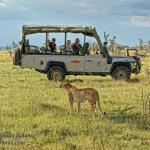 https://www.porini.com/kenya/safari-tours-kenya/recommended-safaris/maasai-mara-big-cat-safari/