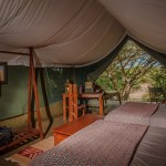 Each luxury tent has a spacious seating area