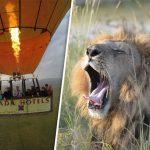 http://www.dailystar.co.uk/travel/adventure/523161/Best-things-to-do-in-Kenya-budget-safari-Masai-Mara-Samburu