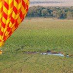 https://artofsafari.travel/destination/luxury-safaris-masai-mara/