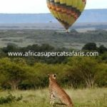 http://www.africasupercatsafaris.com/hot_air_balloon_ride.html