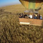 http://africageographic.com/blog/the-maasai-mara-exceeds-expectations/
