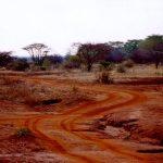 Maasais reside in both Kenya and Tanzania