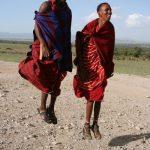 Maasai tribe live in an enclosure
