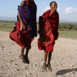 Maasai tribe live in an enclosure