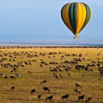 Balloon safari passengers must ensure that they are fit to fly and that they have not undergone any recent surgeries