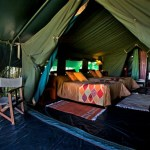 Traditional tented camp delivers exclusive safaris for adventurous couples and families