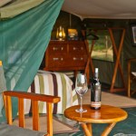 Tented camp delivers exclusive safaris for adventurous couples and families