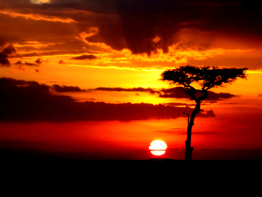 Sunrise in the Mara