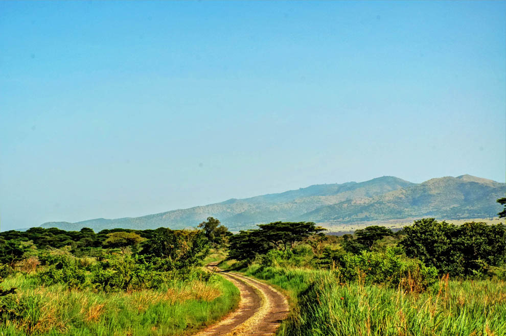 Ruma National Park_road track
