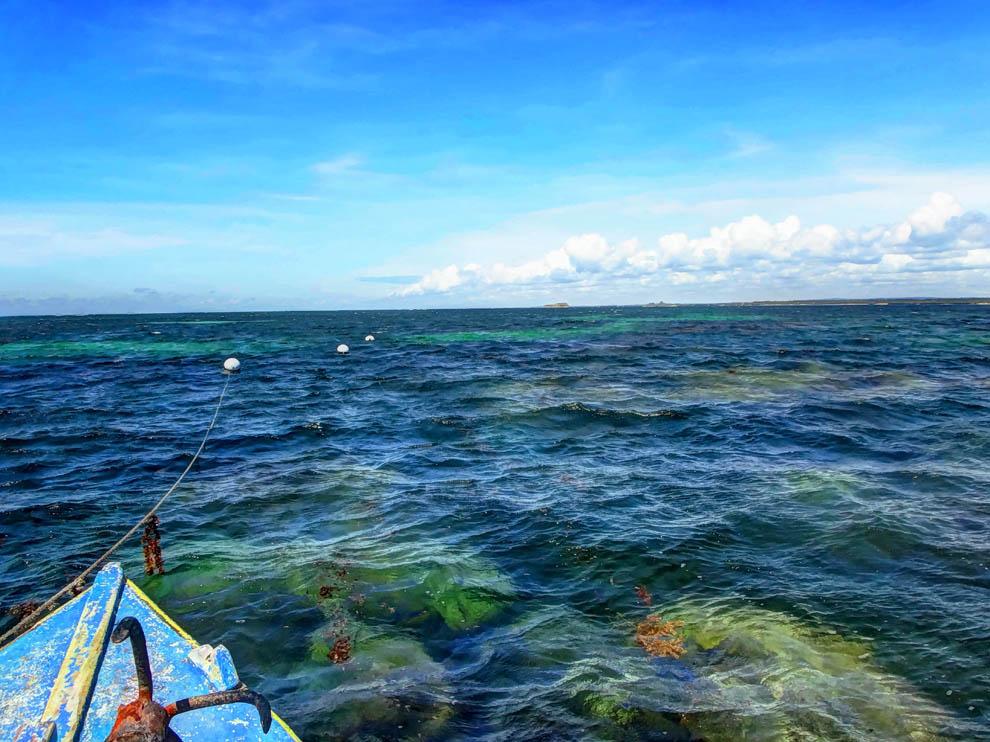 anchor_Watamu marine park