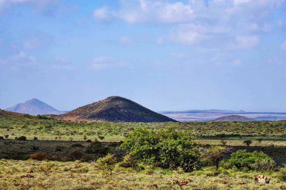 Semidesert landscapeMarsabit N.R.Kenya