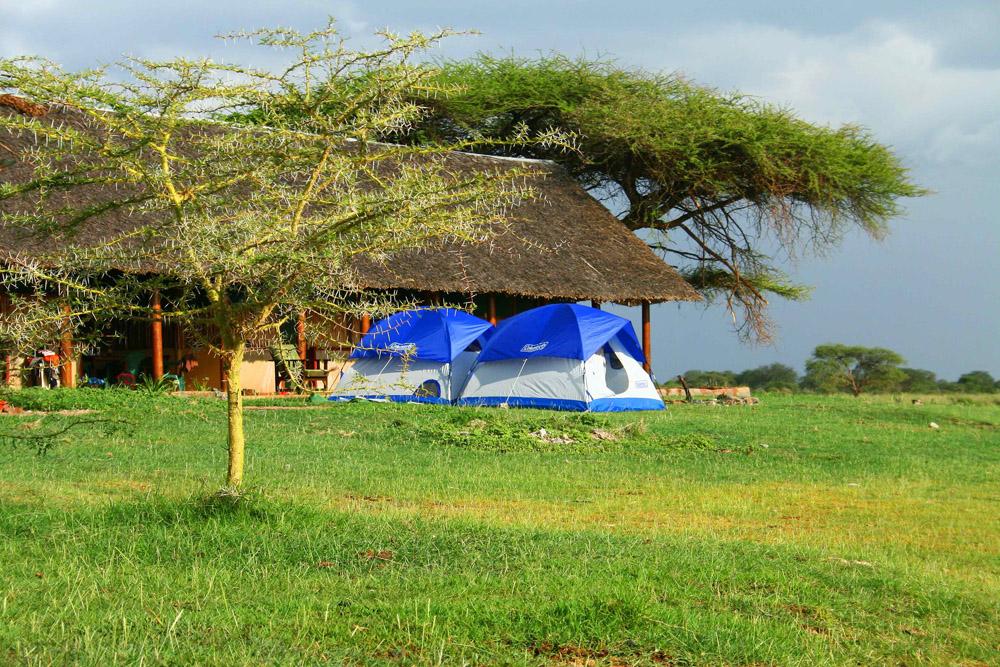 Tsavo West, Chala